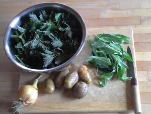 nettle and wild garlic soup